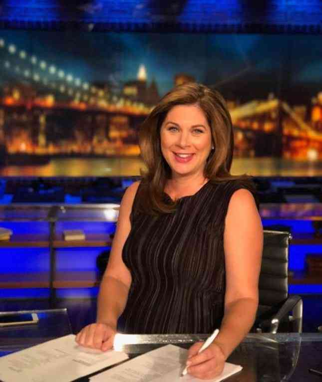 Erin-Burnett-Career